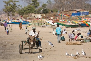 Beachside in The Gambia
