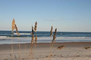 Strand i Alabama